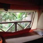 Sivananda Ashram Yoga Retreat Foto