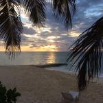 Photo de Osprey Beach Hotel