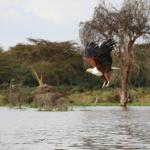 Photo de Julius Tact Safaris - Private Day Trips
