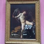 Foto di Picture Gallery (Gemaldegalerie)
