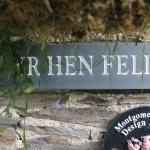 Yr Hen Felin Bed and Breakfast Picture