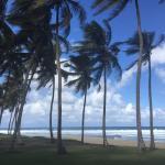 Natura Cabana Boutique Hotel & Spa Photo