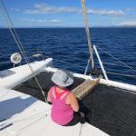 Enjoying the views from the Catamaran