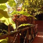 Photo de Casa Hamaca Guesthouse