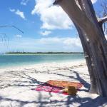 Palm Island Resort Foto