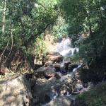 Photo de Sinharaja Forest Reserve