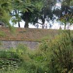 Photo de Orto Botanico di Lucca