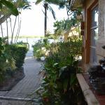 Foto de Turtle Beach Resort