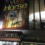 Foto di War Horse