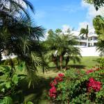 Foto di Flamingo Beach Resort