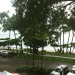 Alassio Palm Cove Foto