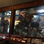 صورة فوتوغرافية لـ ISLAMORADA FISH COMPANY
