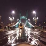 Photo de Liberty Bridge (Szabadsag hid)