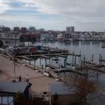 Photo de Atlantic City Aquarium Historic Gardner's Basin