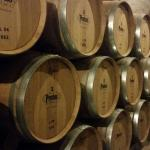 Photo de Bodegas Protos