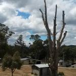 Bronte Park Village Photo