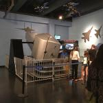 Foto di Museum of Discovery and Science