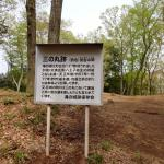 Takino Castle Ruins
