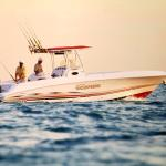 Deep sea fishing charter rentals available at nearby marina