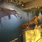 Foto de Natural History Museum of Los Angeles County