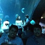 Photo de Aquarium de Paris - CineAqua