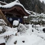 Honjin Foto