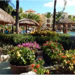 Sandos Playacar Beach Resort 사진