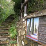 Museo Tesol Photo