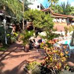 Foto de Parque Tropical