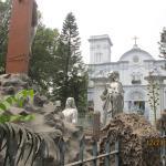 Sacred Heart Church照片