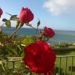 Foto de The Residence Porto Mare Porto Bay
