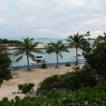 Foto de Harbour Club Villas & Marina