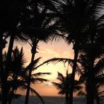 Photo de ClubHotel Riu Bambu