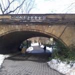 Photo de Central Park Zoo