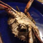 Photo of Dinardo's Famous Seafood