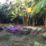 Photo of Kokua Hostel Santa Teresa