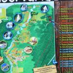 Centro Ecoturistico Cadena de Cascadas El Chiflon照片