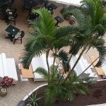 Foto de Dream Hotel Noelia Sur