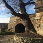 The Belgrade Fortress Foto