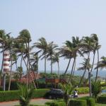 Palm Beach Hotel & Resort Picture