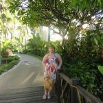 очень зеленая территория у отеля Palm Beach Resort & Spa Sanya