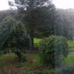 Foto di Ewenny Woods Bed and Breakfast