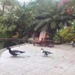 Photo de Hotel El Silencio del Campo
