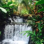 Foto de Tabacon Grand Spa Thermal Resort