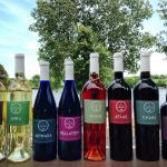 Arcadian Moon Vineyards & Winery