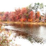 Deam Lake Recreation Area