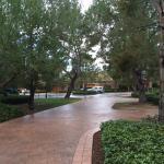 The Resort at Pelican Hill Foto