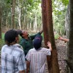 Kin Winik Jungle Tours Foto
