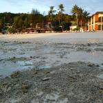Idyllic Concept Resort Foto