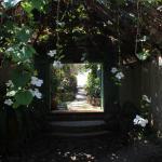 The Temple Lodge Foto